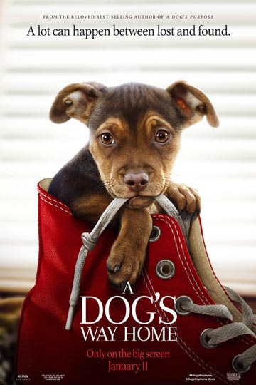 A DOG'S WAY HOME (PG) Movie Poster