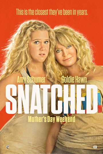 SNATCHED (R) Movie Poster