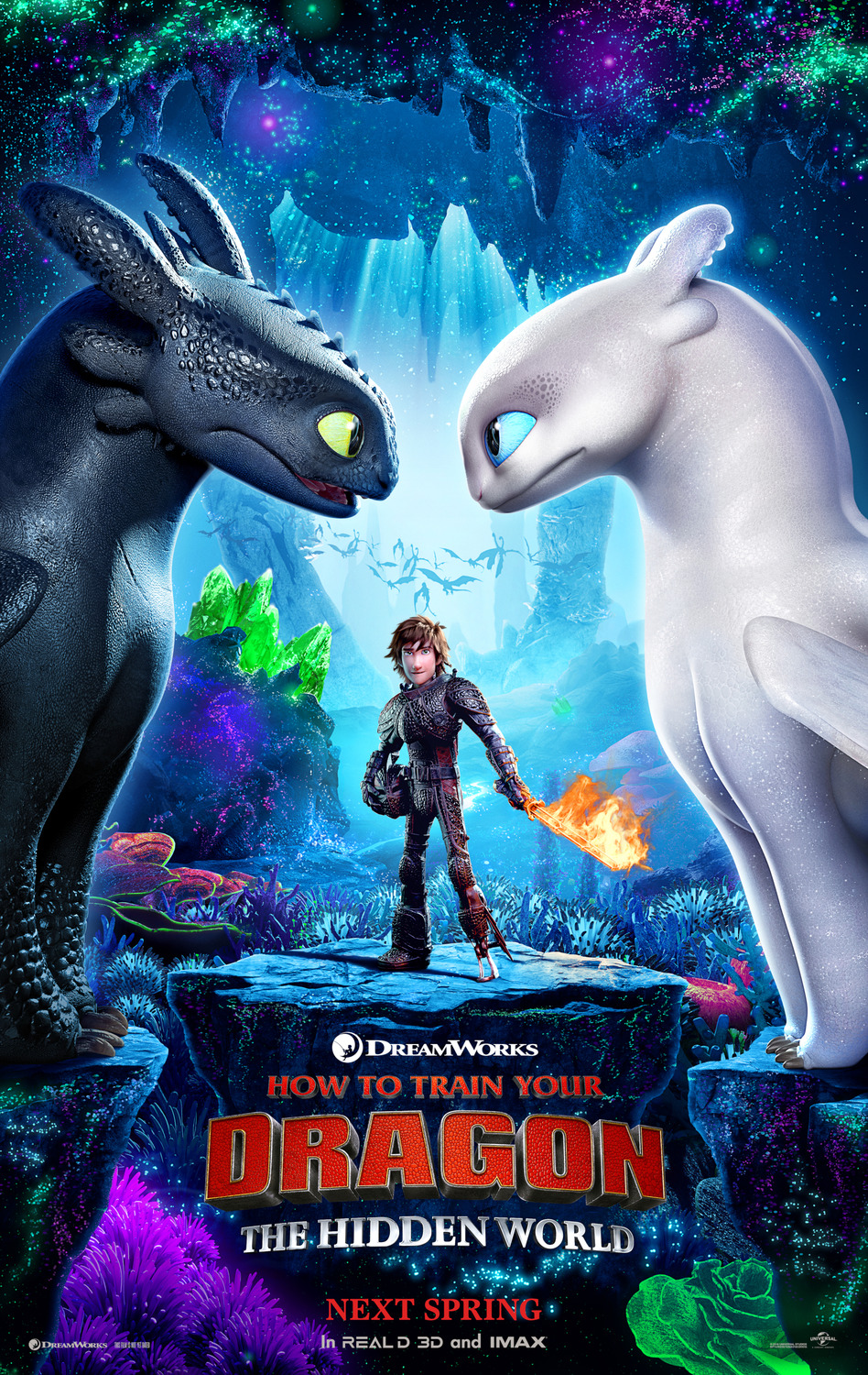 HOW TO TRAIN YOUR DRAGON: THE HIDDEN WORLD (PG) Movie Poster