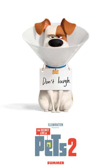 THE SECRET LIFE OF PETS 2 (PG) Movie Poster